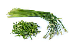 Chives flower or Chinese Chive Stock Images