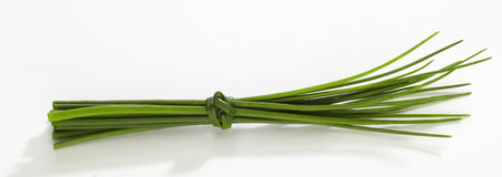 Chives fret on white background. Isolated Royalty Free Stock Photos
