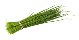 Chives isolated on white. Royalty Free Stock Photography