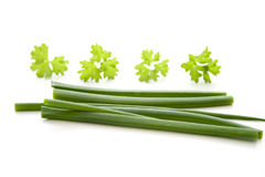 Chives and parsley Royalty Free Stock Image