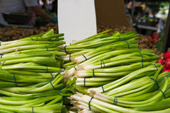 Chives on a street market. Royalty Free Stock Photo
