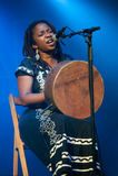Chiwoniso Photographie stock libre de droits