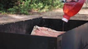 Chlapnąć drewno loguje się grilla przed BBQ zbiory