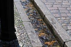 Chle ½ ¿ Bï в старом городке Фрайбурга, Германии Стоковые Фото