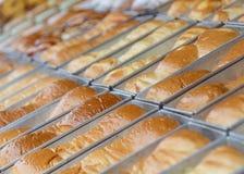 chleb obramiająca zdjęcie grupowa pionowe Obraz Stock