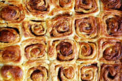 chleb stacza się ślimaczka Obraz Royalty Free