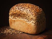 Chleb z kolendrowymi ziarnami na ciemnym drewnie Ostrości sztaplowanie Zdjęcie Stock
