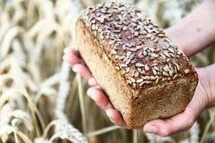 chleb z pszenicznym tłem Obrazy Royalty Free
