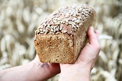 chleb z pszenicznym tłem Zdjęcie Royalty Free