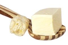 chlebowa jukka zdjęcia stock