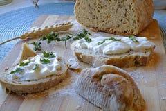 Chlebowa kwaśnej śmietanki i pietruszki śniadania krajobrazu strona szeroka Zdjęcia Stock