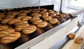 Chlebowa piekarnia zdjęcie royalty free