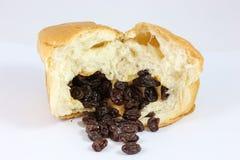 Chlebowa rodzynka Zdjęcie Royalty Free