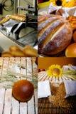 Chlebowa specjalności fabryka Siatka 2x2, ekranizuje rozłam w cztery częściach Zdjęcia Stock
