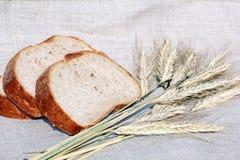 chlebowego zboża ucho plasterki Zdjęcia Stock