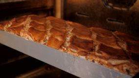 Chlebowej piekarni karmowa fabryczna produkcja zdjęcie wideo