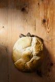 chlebowy żółw Fotografia Royalty Free