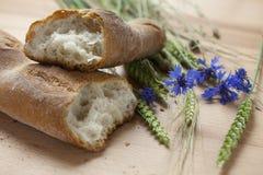 chlebowy francuski świeży Fotografia Royalty Free
