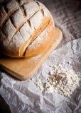 chlebowy francuz Fotografia Stock