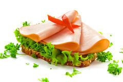chlebowy indyk Obraz Stock