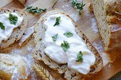 Chlebowy kwaśnej śmietanki i pietruszki śniadania krajobrazu wierzchołka szczegół Fotografia Royalty Free