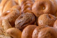 chlebowy różny Obraz Stock