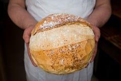 Chlebowy wieśniak Obraz Royalty Free