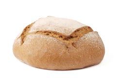 chlebowy żyto Fotografia Stock