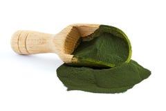 Chlorella alg proszek zdjęcie royalty free