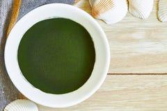 Chlorella alg proszek zdjęcia royalty free