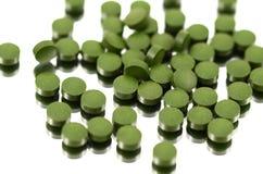 Chlorella (algi) obrazy royalty free