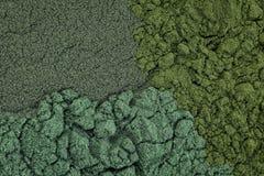 Chlorella, spirulina and blue-green algae background Stock Photography