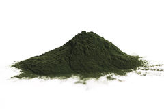 Chlorella verde fotografia de stock royalty free