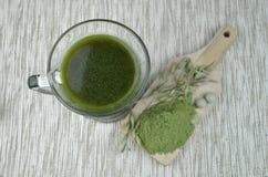 Chlorella verde da desintoxicação da cevada Foto de Stock