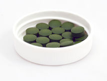 Chlorella Royalty Free Stock Photography