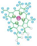 Chlorophyll formula II Royalty Free Stock Images