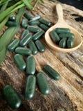 Chlorophyll pill. Close-up pill wheat grass - chlorophyll pill Royalty Free Stock Photos