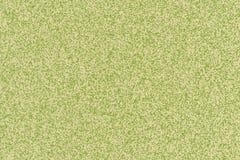 Chlorophylle photo stock