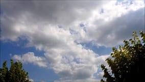 Chmur i drzew timelapse zbiory