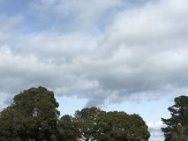 Chmur pierzastych chmury nad drzewo wierzchołkami i parą przemiana czerwona i biała górują Obraz Royalty Free