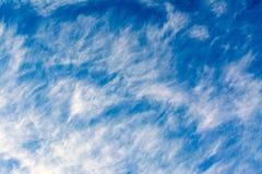 Chmur pierzastych chmur pławik na niebieskim niebie obraz royalty free