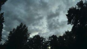Chmura pławik przez niebo Las i niebo z chmurami zbiory wideo