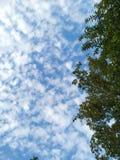 Chmura w niebieskim niebie patrzeje piękny wspaniałego zdjęcie royalty free