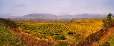Chmurna jesień w Wachau dolinie Zdjęcie Royalty Free
