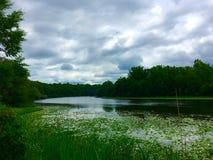 chmurna rzeka Fotografia Royalty Free