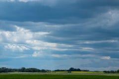 Chmurni nieba nad canola pola, Saskatchewan, Kanada obrazy stock