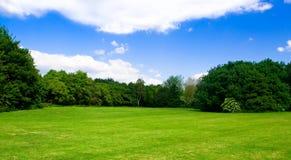chmurnieje łąkowego chciwości niebo niektóre Obrazy Royalty Free