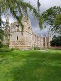 Chmurnieje drzewo trawy starego budynek Zdjęcie Royalty Free