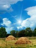 chmurnieje nieba słońca drewno Obrazy Stock