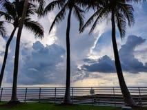 Chmurnieje niebo po burzy, tropikalna plaża z drzewkami palmowymi zdjęcie royalty free